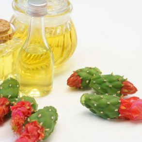 Benefits of Prickly Pear Seed Oil